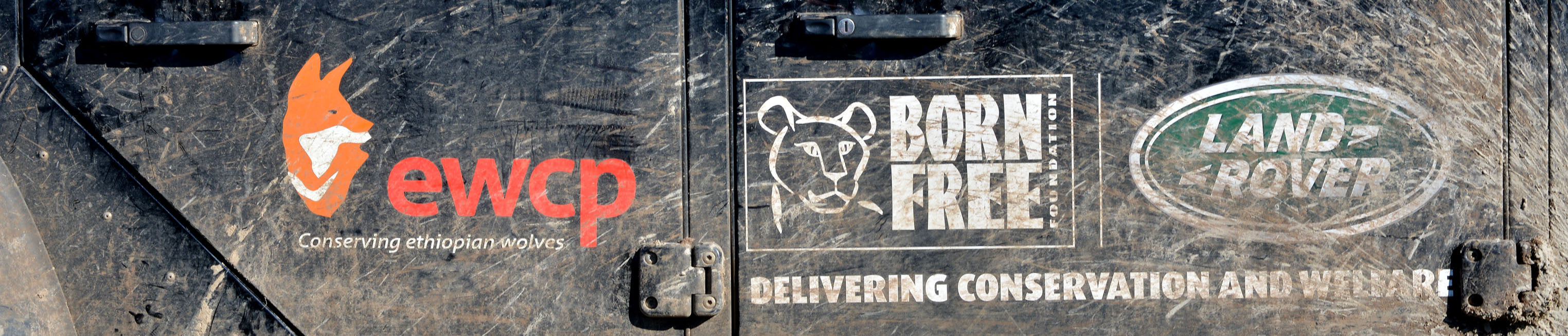 Land Rover Born Free 2 banner